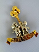 l_19790caring_for_kids_pin
